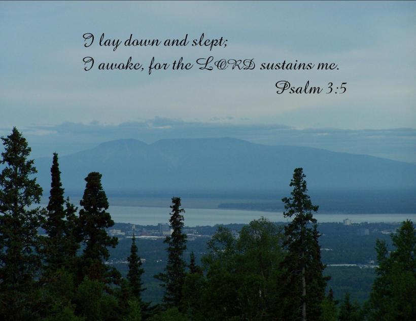 Psalm 3 5