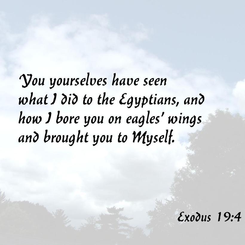 Exodus 19 4